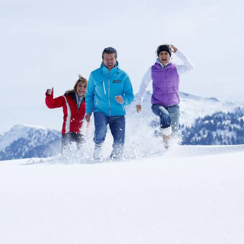 Winter holiday: Alpine skiing, cross-country skiing, winter hiking